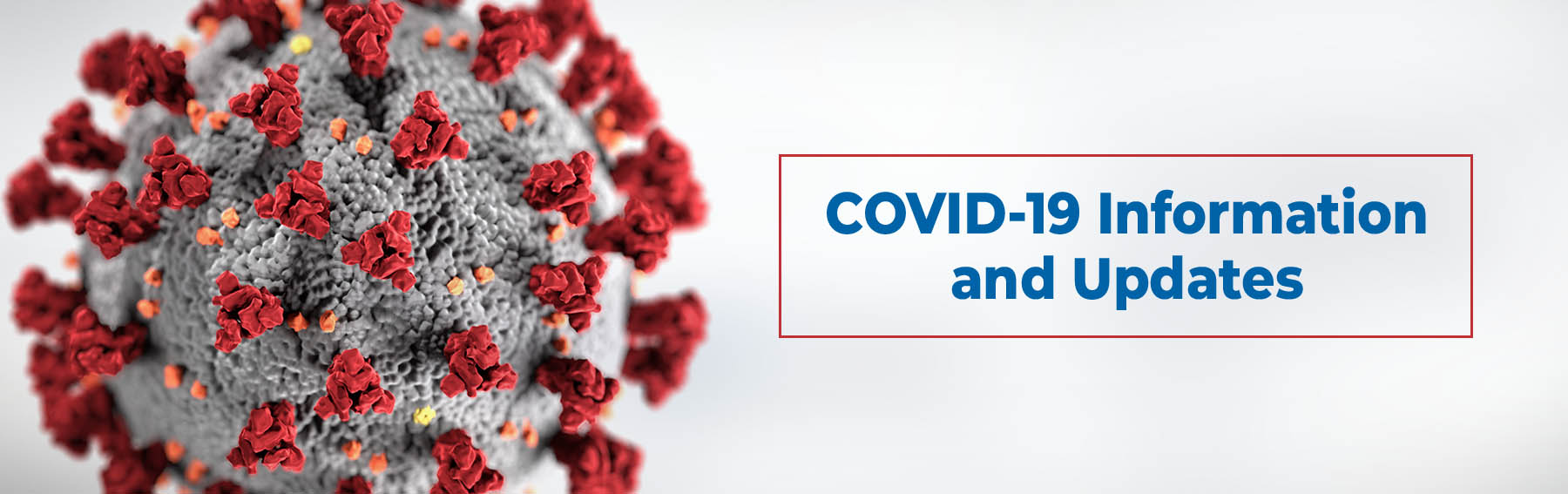 COVID-19 Guidelines header